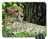 マウスパッド???Cheetah Cat Wild Nature Wildcat Speed Fast