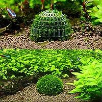 Cocas Moss bucephalandra spホルダー 水族館の風景用 ミネラルボールエビタンク付き 33B87B6821CE9418E90EB7C14B0F9526