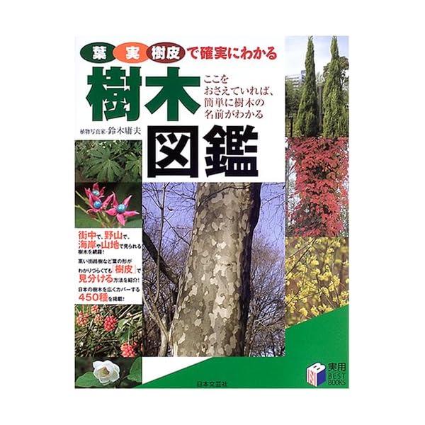 樹木図鑑―葉・実・樹皮で確実にわかる (実用BE...の商品画像