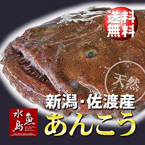 魚水島 新潟・佐渡産 天然 あんこう アンコウ 一匹丸もの 3kg以上
