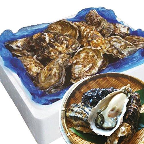 殻付き牡蠣 生食用 宮城県産 (5kg 約40-70個)