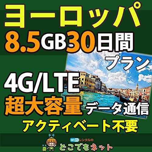お急ぎ便ヨーロッパ 周遊 プリペイド SIMカード 4G データ 通信 (超大容量(8.5GB/30日))