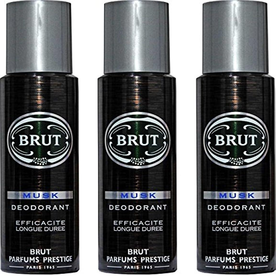 質素なテナントトラブルBRUT MUSK Deodorant Spray For Men - 200 Ml Pack Of 3