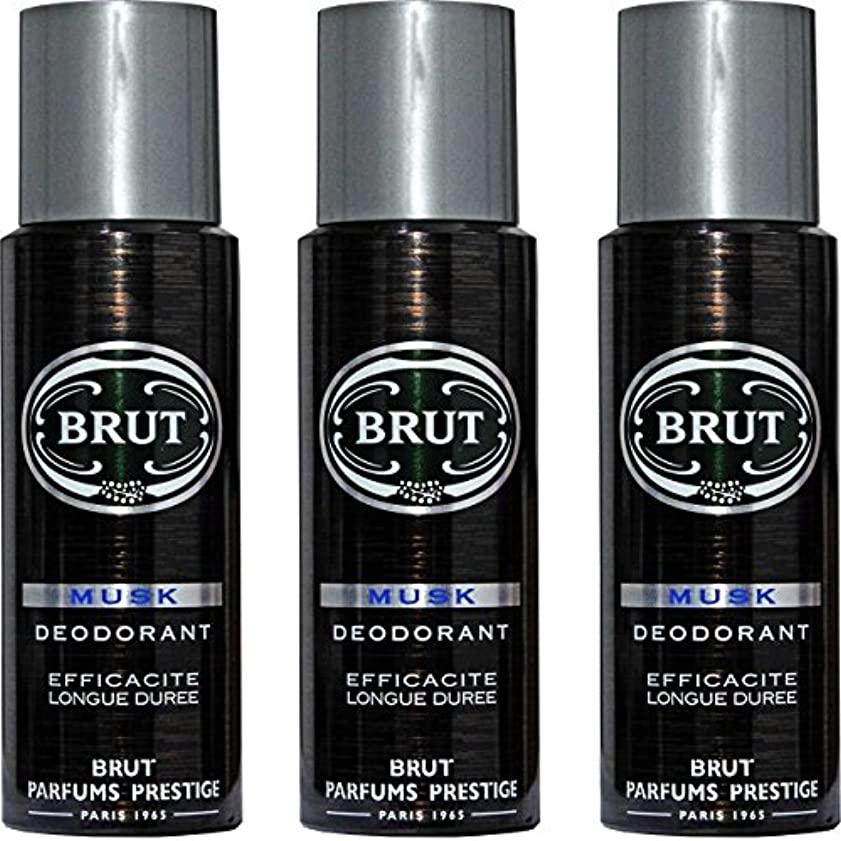 騒法令離婚BRUT MUSK Deodorant Spray For Men - 200 Ml Pack Of 3