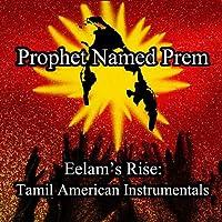 Eelam's Rise: Tamil American Instrumentals