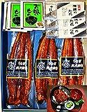 【御歳暮ギフト】鰻蒲焼3枚セット・ふっくらととろける炭火焼の鰻蒲焼 ご贈答・ご自宅用に・お誕生日プレゼントにも!ジューシーな鰻蒲焼をお召し上がりください