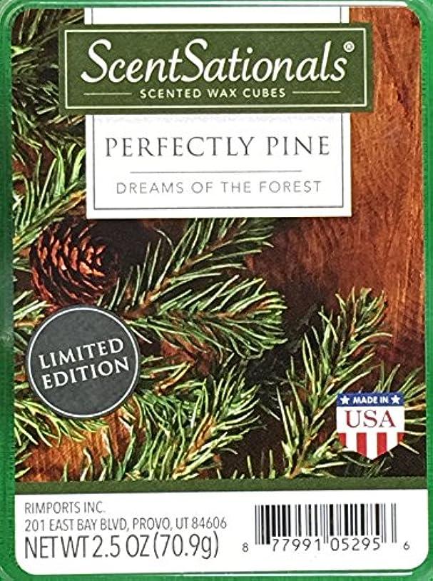 テニス思春期の野な(6 CUBES (70ml)) - ScentSationals Perfectly Pine Wax Cubes