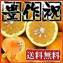 みしょうかん 和製グレープフルーツ 美生柑 河内晩柑 宇和ゴールド 訳あり 不揃い 7kg