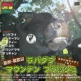 泉州・和歌山・ラバダブ・マウンテン・フラッシュ・スタジオライブ