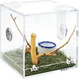 Acrylic Critter Keeper Jumping Spider Enclosure Snail Container House Accessories Reptile Terrarium Insect Enclosure Tank Sna