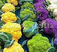 50個レアオーガニックRomanescoタワーブロッコリー盆栽、ローマのカリフラワーフラクタルヘッドBroccoflower野菜DIYホーム&ガーデン:混合