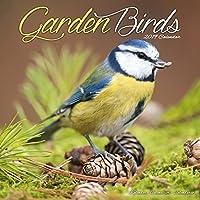 Garden Birds Calendar 2019