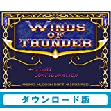 ウィンズ オブ サンダー[WiiUで遊べる PCエンジンソフト] [オンラインコード]