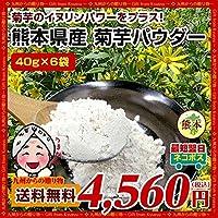 菊芋パウダー 40g×6袋 熊本県産菊芋使用 テレビや雑誌で話題 イヌリンパワーインスリン たけしの家庭の医学