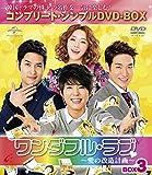 ワンダフル・ラブ~愛の改造計画~ BOX3 (コンプリート・シンプルDVD-BOX5,000円シリーズ)(期間限定生産) -