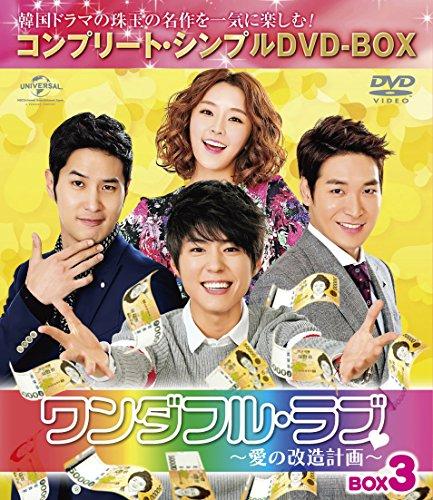 ワンダフル・ラブ~愛の改造計画~ BOX3 (コンプリート・シンプルDVD-BOX5,000円シリーズ)(期間限定生産)
