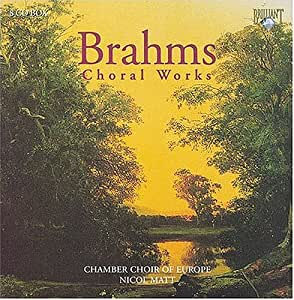 Brahms : Choral Works (Box)