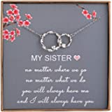 AnalysisyLove Sister Gifts from Sister - Sterling Silver Interlocking Infinity 2 Circles Necklace for Sisters, Birthday Jewel