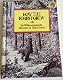 How the Forest Grew 画像