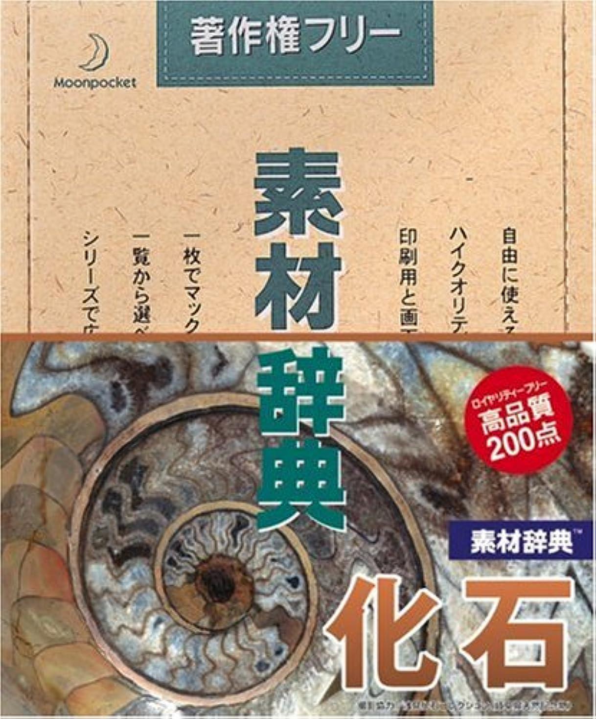 フェミニン平手打ち運河素材辞典 Vol.11 化石編