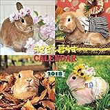 うさぎと暮らすカレンダー2018(壁掛) ([カレンダー])