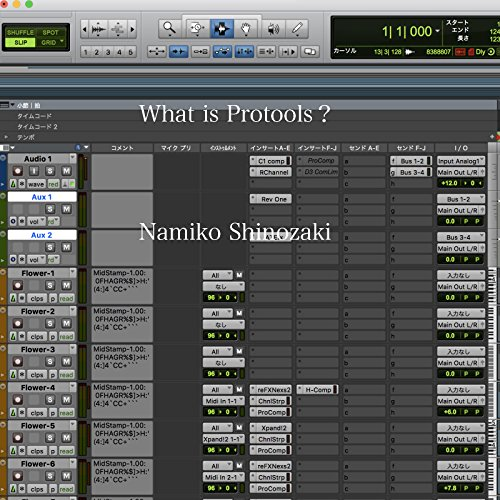 What Is Protools?(English Ver) (SN.inc)