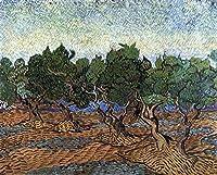 手描き-キャンバスの油絵 - Olive Grove 2 フィンセント・ファン・ゴッホ scenery 芸術 作品 洋画 LEPS3 -サイズ05