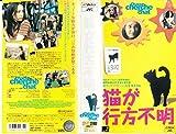猫が行方不明【字幕版】 [VHS]
