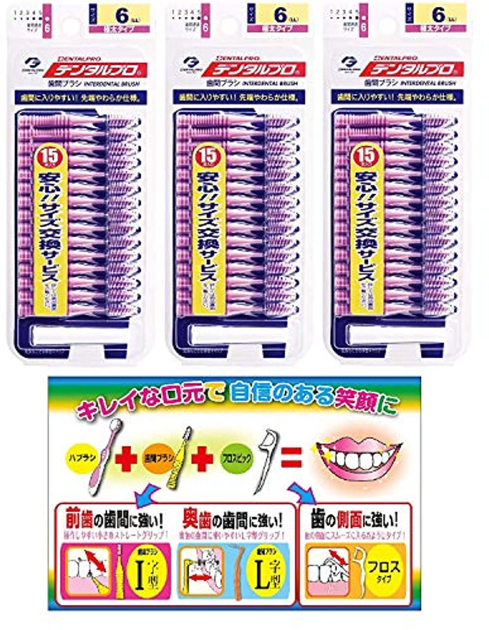 反対数学者顔料DP歯間ブラシ15Pサイズ6(LL)3P+リーフレット
