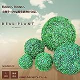 My Vision 観葉植物 ボール リアルプラント 5サイズ 人工 部屋 リアル おしゃれ フェイクグリーン (直径22cm) MV-KUSATAMA-22