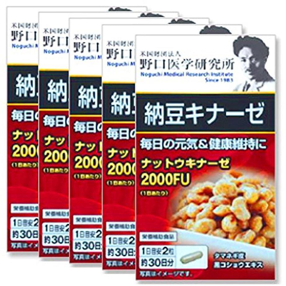 学習者早く比類のない野口医学研究所 納豆キナーゼ 60粒×5個セット