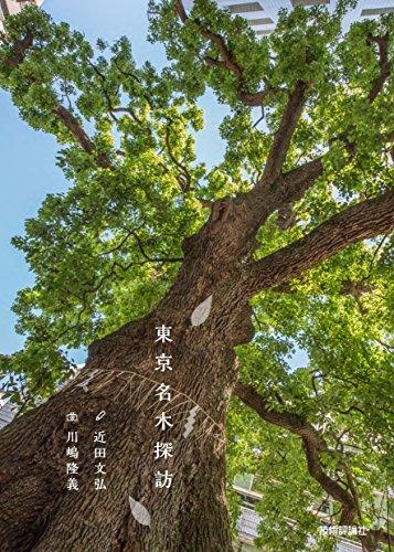 東京名木探訪 (プロの目線で散策気分)