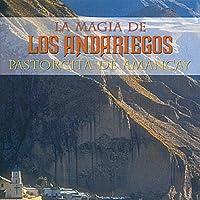 PASTORCITA DE AMANCAY