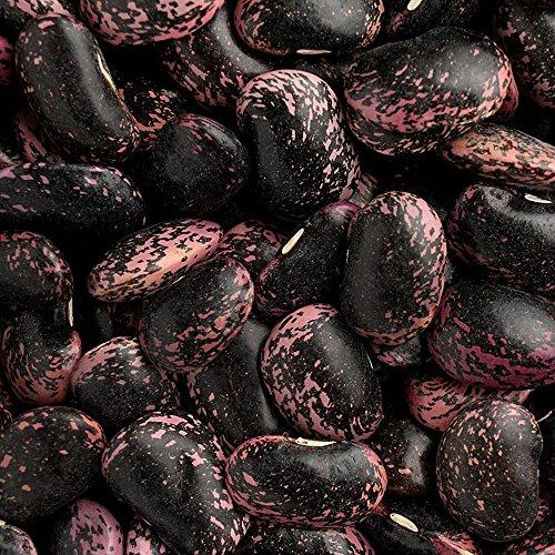紫花豆 - 北海道産 国産(300g)