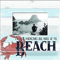Carson Beach Memories グレーフレーム ホームデコレーション