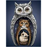 DIY 5D Diamond Painting by Number Kit for Adult Kids, Full Drill Animal Owl Shiny Rhinestone Embroidery Dotz for Home Wall De