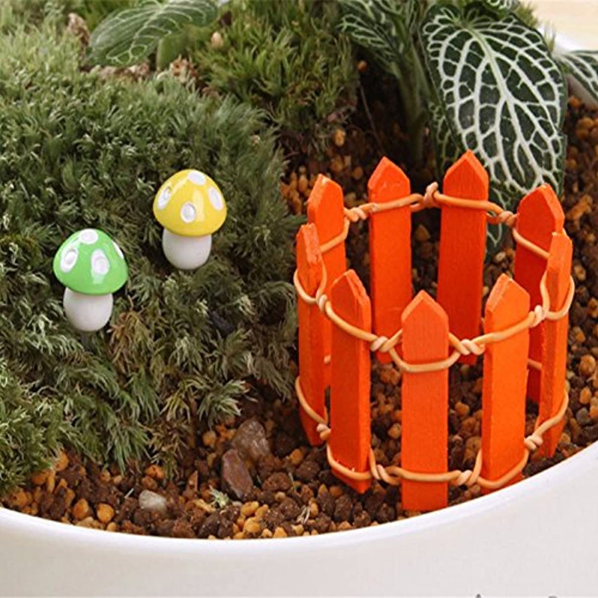 どうしたの相互設計図Jicorzo - 20個DIY木製の小さなフェンスモステラリウム植木鉢工芸ミニおもちゃフェアリーガーデンミニチュア[オレンジ]