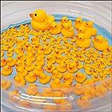 ぷかぷかアヒル大中小すくいどりイベント 157個/おもちゃ 景品 お祭り 縁日  2695