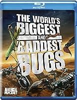World's Biggest & Baddest Bugs [Blu-ray] [Import]