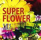 SUPER FLOWER(通常1~2営業日以内に発送)