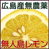 無農薬 無人島のレモン 1kg
