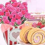 ピンクカーネーション5号鉢と苺ロールケーキのセット 花とスイーツ