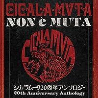 CICALA-MVTA Non e Muta
