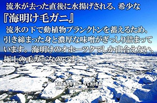 【秋ギフト 北海道 オホーツク海沿岸産 流氷海明け毛ガニ 570g前後】日本テレビ「嵐にしやがれ」で紹介された海明けオホーツク産毛ガニ。流氷がもたらすミネラル豊富な栄養分をたっぷり取り込み育った毛ガニを水揚げ後すぐに浜茹し急速冷凍しました。鮮度はそのままの毛蟹をご堪能いただけます。時にはギフトに、時には自分へのご褒美をちょっと贅沢に。 (570g 1尾)