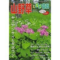 山野草とミニ盆栽 2007年 05月号 [雑誌]