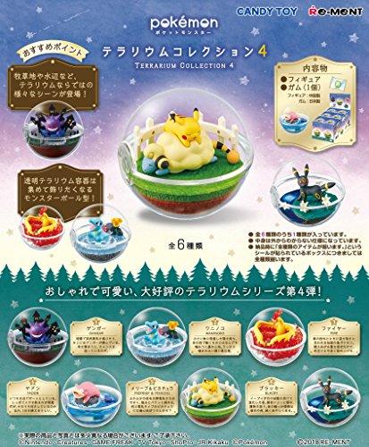 ポケットモンスター テラリウムコレクション4 BOX 6個入...