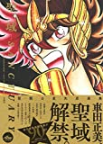 聖闘士星矢30周年記念画集 聖域-SANCTUARY- 【本書限定ポスター付き】 画像
