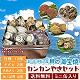 美し国伊勢志摩貝の海宝焼 鳥羽産牡蠣10個 さざえ2個 大あさり2個 あっぱ貝4個 (牡蠣ナイフ、片手用軍手付)カンカン焼き ミニ缶入