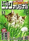 ビッグコミックオリジナル 2017年 6/5 号 [雑誌]