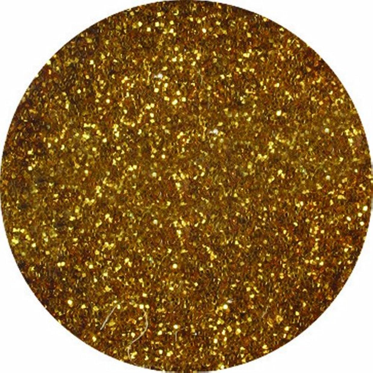可能性ロッジノベルティビューティーネイラー ネイル用パウダー 黒崎えり子ジュエリーコレクション ダークゴールド0.05mm
